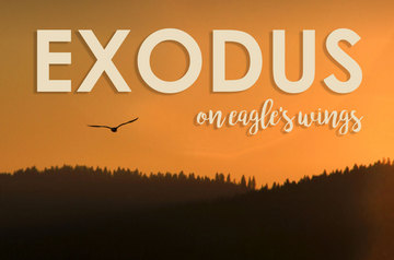 On Eagles wings - Exodus